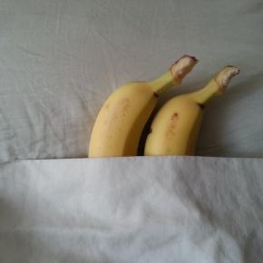 XXX Fruit