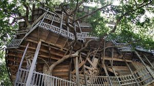 treehouse2x-large
